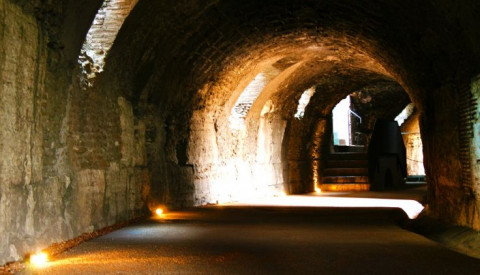 Gain special access to restricted areas of the Flavian amphitheatre