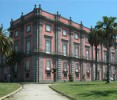 The Museum of Capodimonte in the Royal Residence of Naples