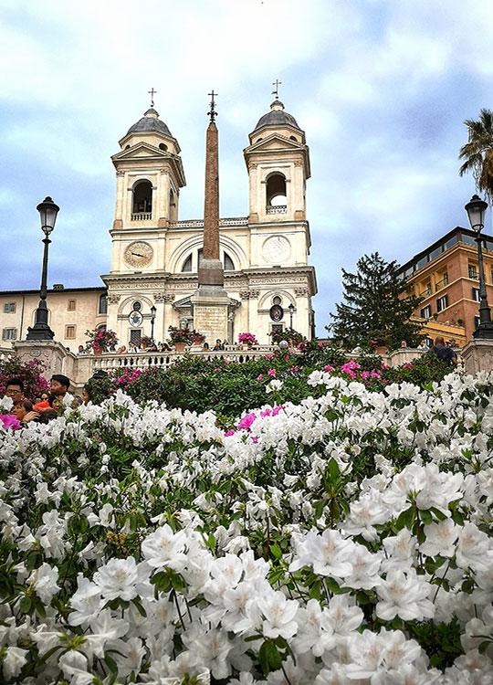 Spanish Steps with azalea flowers