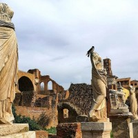 Admire the beautiful statues in the house of the Vestal Virgins