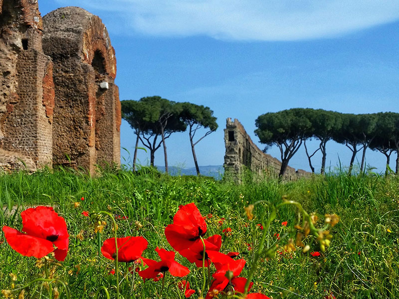 Ancient aqueducts in Rome