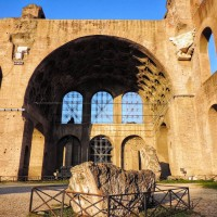 Private Tour of the Colosseum with Roman Forum & Palatine Hill 3hrs - image 7