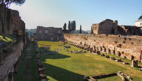 Private Tour of the Colosseum with Roman Forum & Palatine Hill 3hrs - image 2