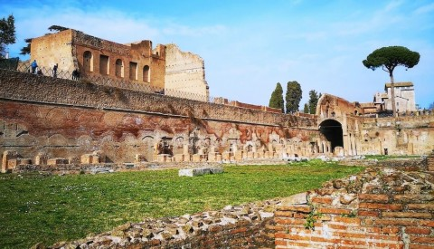 Let yourself be transported back to the golden age of antiquity as you wander through the ruins of the Palatine hill