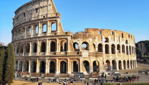 Learn everything you need to know about the Colosseum on our tour